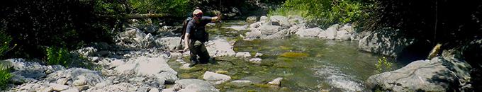Verdello Fly: la pesca nei torrenti di tutto il mondo
